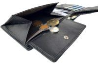 Samsonite wallet Success 007 6